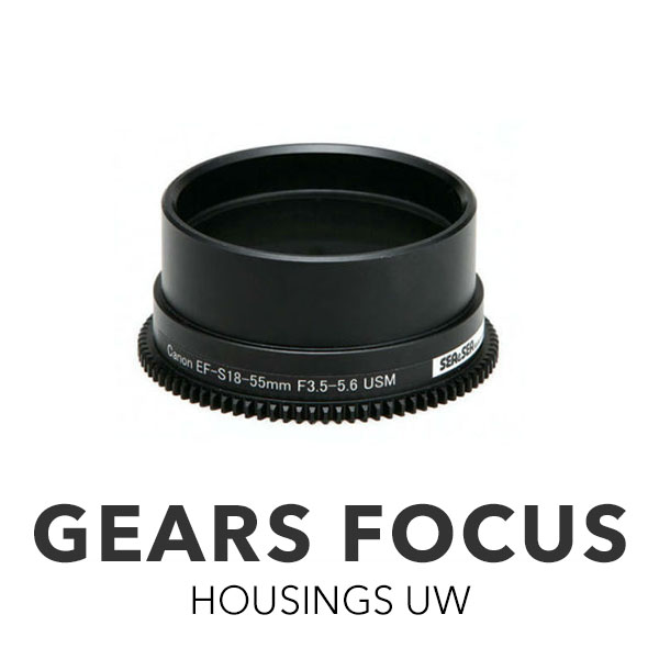 Gears Focus Accessories [All]