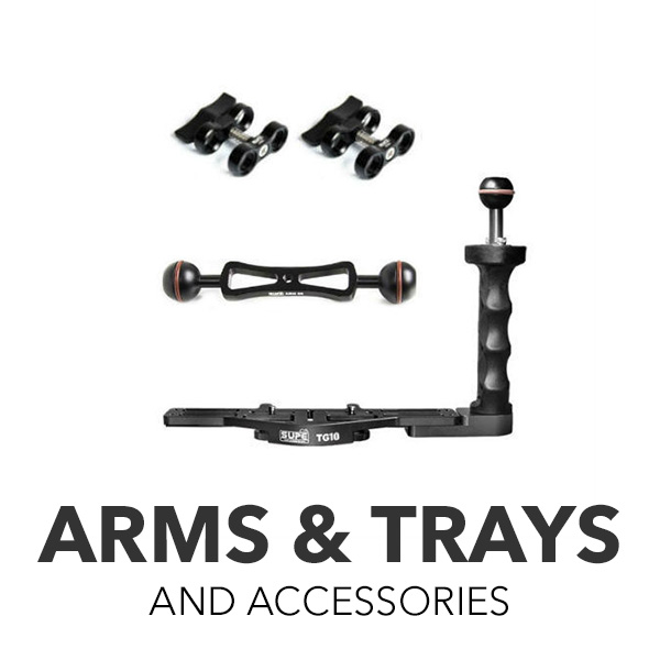 Arms & Trays