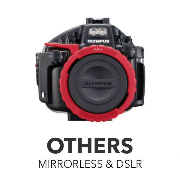 Others Mirrorless & DSLR