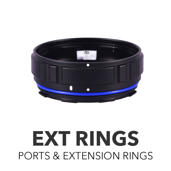 Extension Rings & Bases